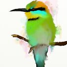 Rainbow Bee-eater by Catherine Gabriel