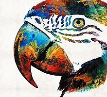 Parrot Head Art By Sharon Cummings by Sharon Cummings
