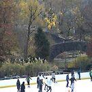 Skating Rink, Classic Bridge, Central Park, New York City by lenspiro