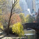 Autumn Foliage, Classic Bridge, Central Park, New York City by lenspiro