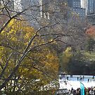 Autumn Foliage, Skating Rink, Central Park, New York City   by lenspiro