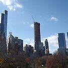Autumn Foliage, Central Park South Skyline, New York City   by lenspiro