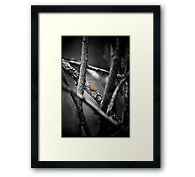 the wailing limb Framed Print