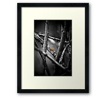 the wailing limb Framed Print