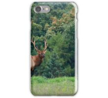 Bull Elk, Bennezette 2014 iPhone Case/Skin