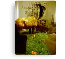 The lounge needs mowing again Canvas Print