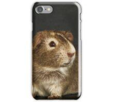 Posing Guinea Pig iPhone Case/Skin