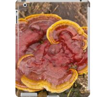 Kidney-Shaped Tooth Polypore iPad Case/Skin