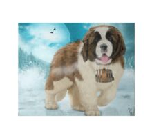 On A Mission - The Saint Bernard Art Board