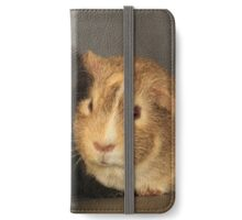 Two Guinea Pigs iPhone Wallet/Case/Skin