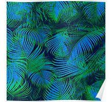 brazil palm tree graphic retro design pattern Poster