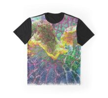 The Atlas Of Dreams - Color Plate 85 Graphic T-Shirt