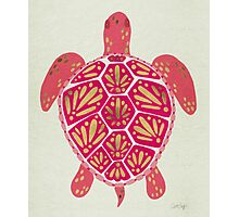 Pink & Gold Sea Turtle Photographic Print