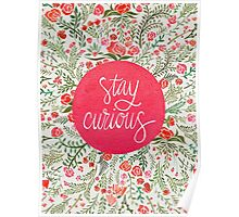 Stay Curious – Pink & Green Poster