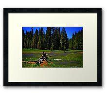 Summit Meadow at Yosemite Framed Print