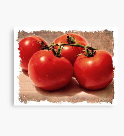 Vintage Grunge Tomatoes Canvas Print