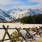 Squaw Valley by Barbara  Brown