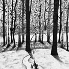 'Into the Big Woods' by Jerry Kirk