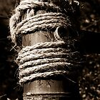 Bamboo and rope by Thad Zajdowicz