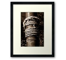 Bamboo and rope Framed Print