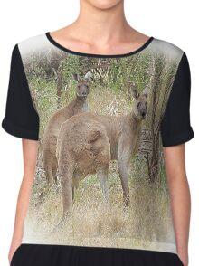 Kangaroos in the Park Chiffon Top