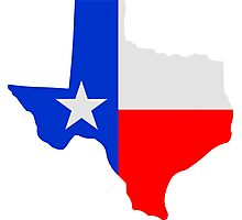 State of Texas Lone Star  Photographic Print