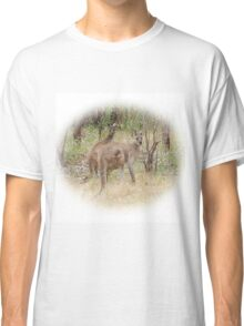Kangaroos in the Park Classic T-Shirt