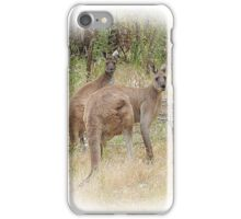 Kangaroos in the Park iPhone Case/Skin