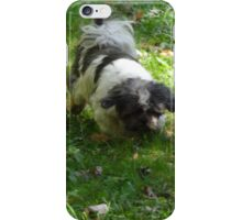 Come along Kato iPhone Case/Skin