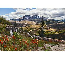 Mount Saint Helens and Summer Wildflowers Photographic Print