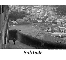 Solitude by Brian Sesack