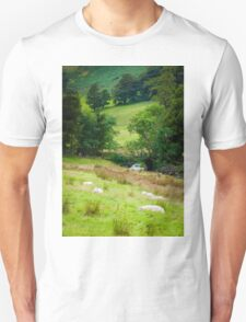View of English sheep in countryside, UK T-Shirt