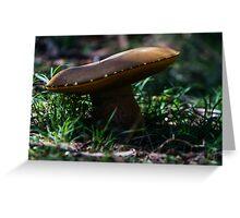 Large Mushroom Greeting Card