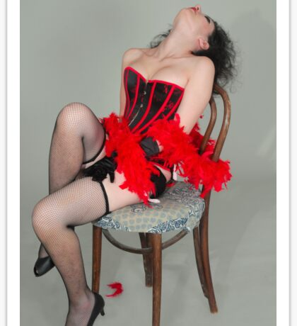 Young sexy woman in corset and fishnet stockings  Sticker
