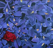 Purple Iris With One Red Rose by Jane Adrianson