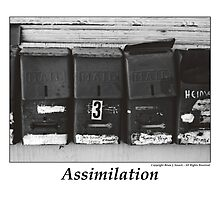 Assimilation by Brian Sesack