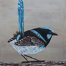 Blue Wren - Painting by Sandy1949