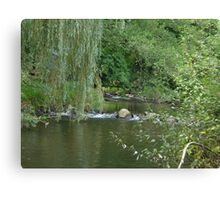 willow brook Canvas Print