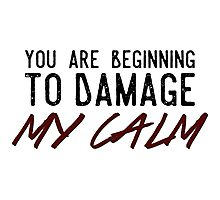 You Are Beginning to Damage My Calm Photographic Print
