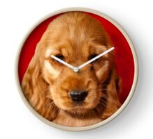 Cocker Spaniel Puppy Clock