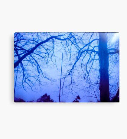 Trees on Film Canvas Print