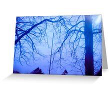 Trees on Film Greeting Card