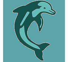 dauphin  Dolphin Photographic Print