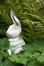 White Rabbit Among Lady's Mantel And Ferns - Digital Gouache Art Work by Sandra Foster