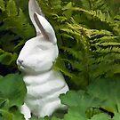 White Rabbit Among Lady's Mantel And Ferns - Digital Gouache Art Work by Sandra Foster