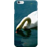 Swan, Lake Bled, Slovenia iPhone Case/Skin
