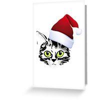 christmas cat katze kitty santa rote mütze Greeting Card
