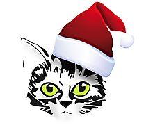 christmas cat katze kitty santa rote mütze Photographic Print