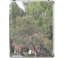 Colourful Trees iPad Case/Skin