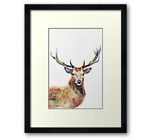 Deer watercolor Framed Print